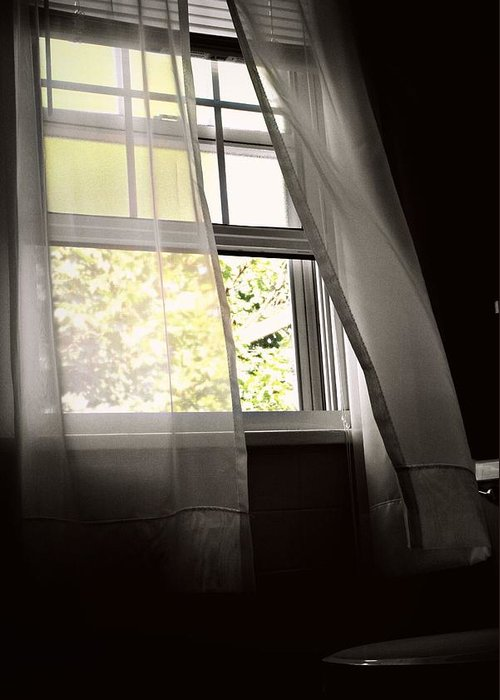 Window Greeting Card featuring the photograph Summer Breeze by Megan Zidek