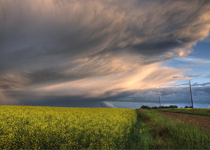 Alberta Greeting Card featuring the photograph Summer Evening Storm Blowing Over Ripe by Dan Jurak
