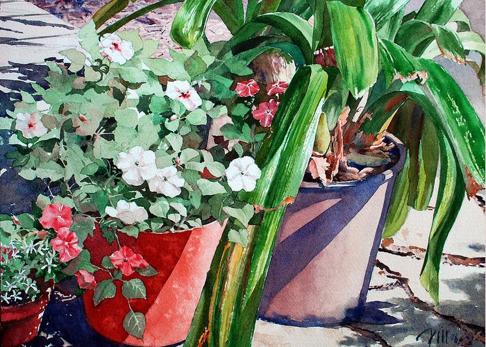 Peter Sit Watercolor Greeting Card featuring the painting Summer Impatiens by Peter Sit