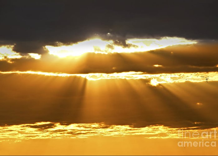 Sunset Greeting Card featuring the photograph Sun Rays At Sunset Sky by Elena Elisseeva