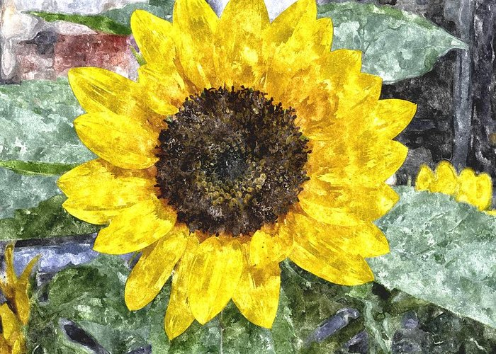 Sunflower Greeting Card featuring the digital art Sunflower 4 Sf4wc by Jim Brage