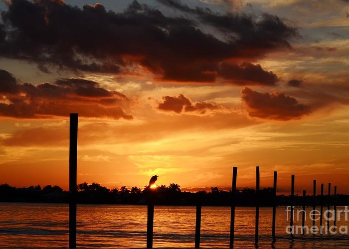 Sunset Greeting Card featuring the photograph Sunset 1-1-12 by Lynda Dawson-Youngclaus