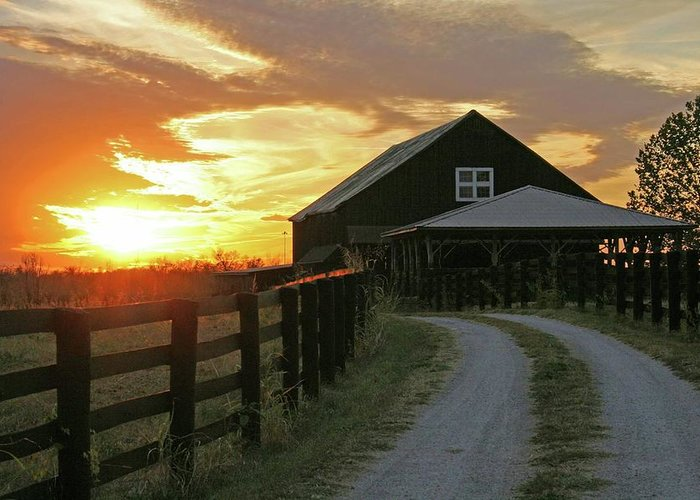 Sunset Greeting Card featuring the photograph Sunset At The Farm by Christopher Hignite