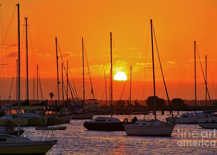 Davis Island Greeting Card featuring the photograph Sunset Davis by Wendy Ohlman