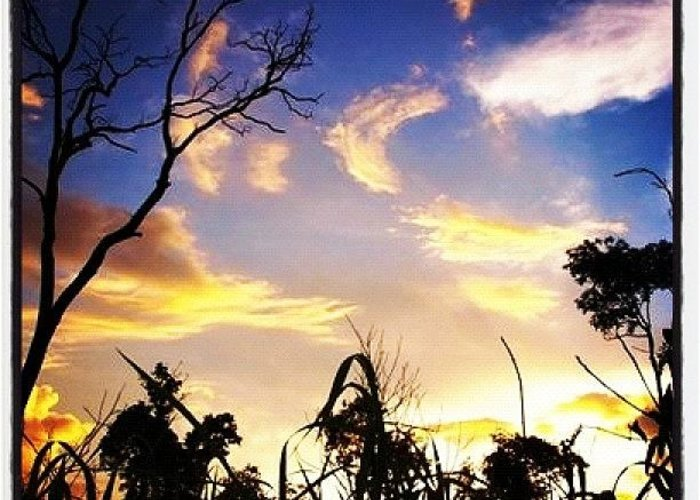 Beautiful Greeting Card featuring the photograph Sunset Nonthaburi #igers #webstagram by Rocky Boat