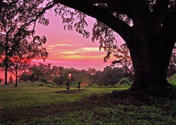 Alabama Photographer Greeting Card featuring the digital art Sunset On The Bench by Michael Thomas