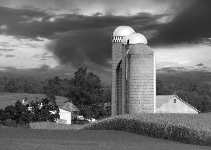 Farm Greeting Card featuring the photograph Sunset On The Farm Bw by David Dehner