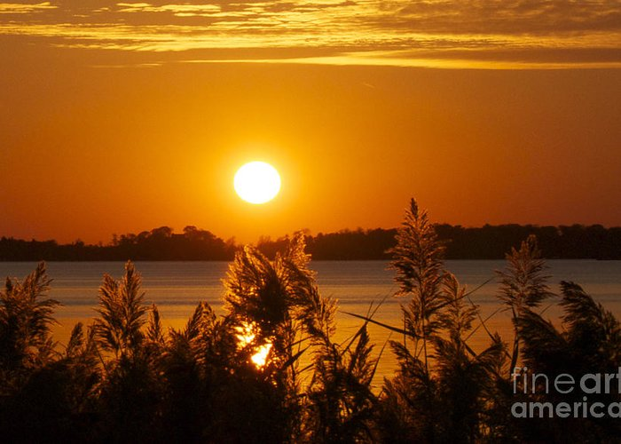 Sunset Greeting Card featuring the photograph Sunset On White Lake by Cheryl Butler