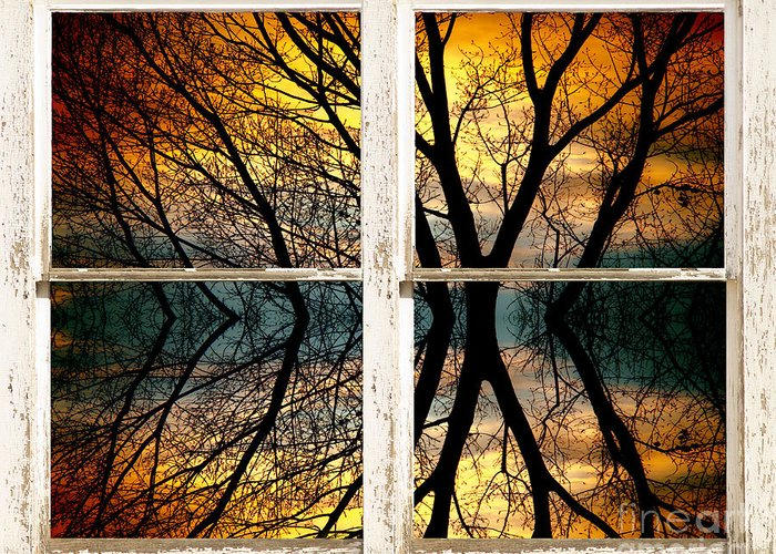 Colorful Greeting Card featuring the photograph Sunset Tree Silhouette Abstract Picture Window View by James BO Insogna