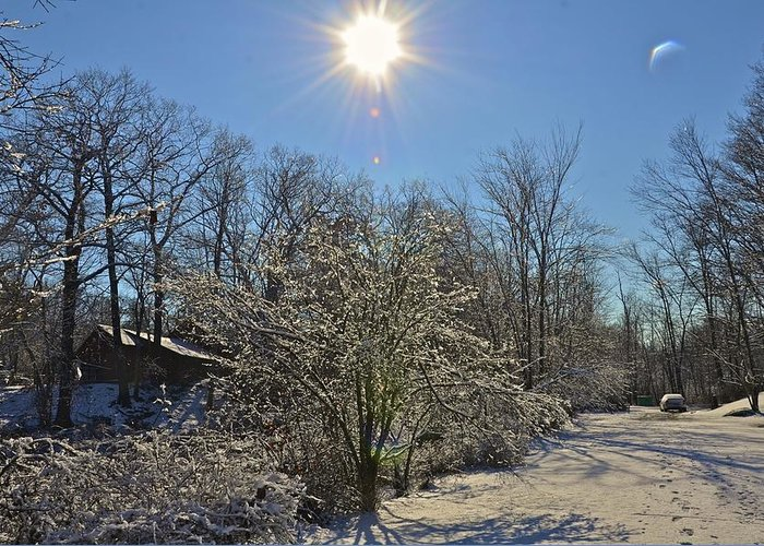 Sun Fresh Snow Greeting Card featuring the photograph Sunshine In The Snow by Nancy Rohrig
