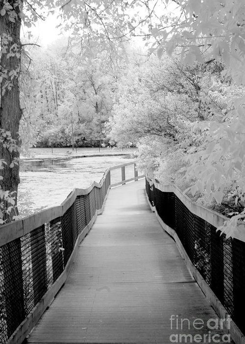 Infrared Greeting Card featuring the photograph Infrared Surreal Black White Infrared Bridge Walk by Kathy Fornal
