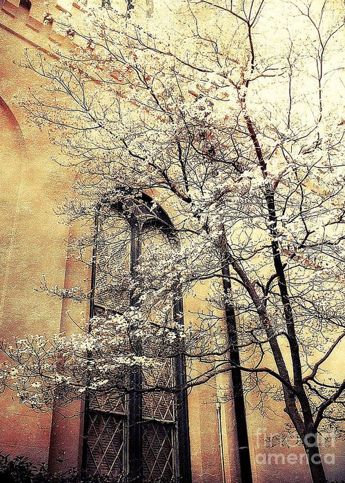 Surreal Trees Greeting Card featuring the photograph Surreal Gothic Church Window With Fall Tree by Kathy Fornal