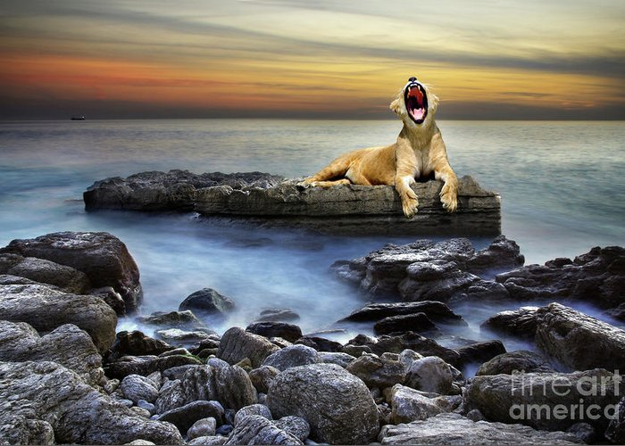 African Greeting Card featuring the photograph Surreal Lioness by Carlos Caetano