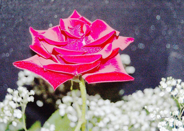 Poster Greeting Card featuring the photograph Suzannes Fantasy Rose by Suzanne Gaff
