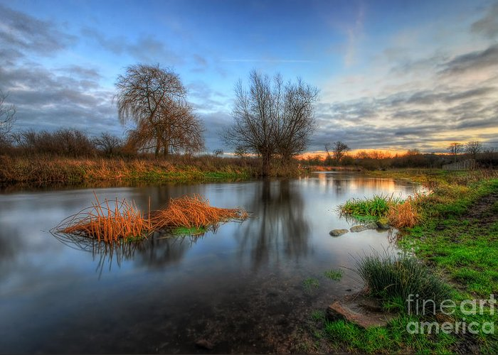 Hdr Greeting Card featuring the photograph Swampy 2.0 by Yhun Suarez