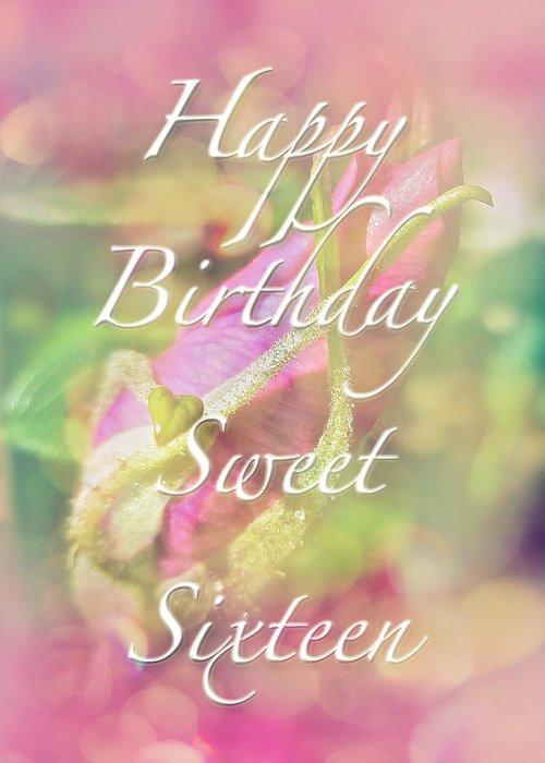 Sweet sixteen birthday greeting card rosebud greeting card for sixteen greeting card featuring the photograph sweet sixteen birthday greeting card rosebud by mother nature m4hsunfo
