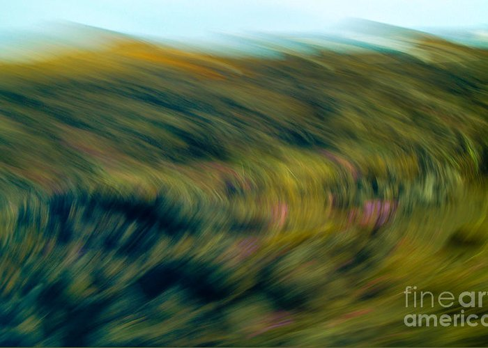 Motion Greeting Card featuring the photograph Swirling Field by Michael Canning