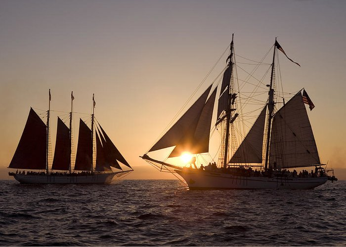 Tall Ships Greeting Card featuring the photograph Tall Ships At Sunset by Cliff Wassmann