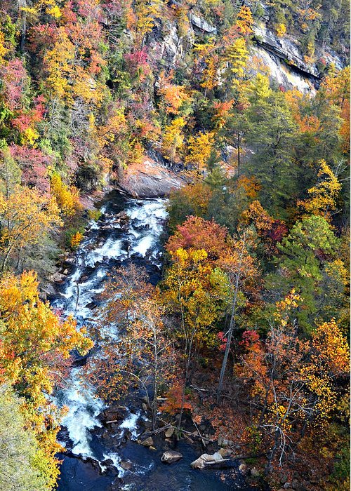River Greeting Card featuring the photograph Tallulah River Gorge by Susan Leggett
