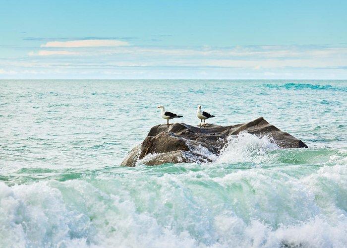 Sea Greeting Card featuring the photograph Tasman Sea by MotHaiBaPhoto Prints