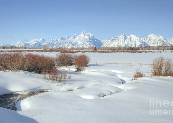 Grand Tetons Greeting Card featuring the photograph Teton Snow by Idaho Scenic Images Linda Lantzy