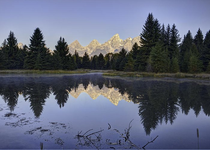 Grand Tetons Greeting Card featuring the photograph Tetons Over The Beaver Pond by Mark Harrington