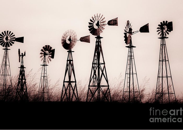 Texas Greeting Card featuring the photograph Texas Windmills by Tamyra Ayles