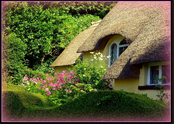 Selworthy Greeting Card featuring the photograph Thatched Cottage With Pink Flowers by Carla Parris