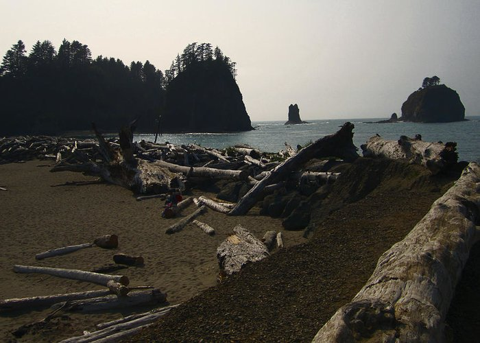 La Push Greeting Card featuring the photograph The Beach At Twilight by Kym Backland