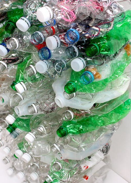 Bottles Greeting Card featuring the photograph The Cycle Of Recycling II by Jenny Wertheimer