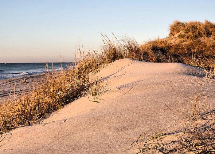 Jones Beach Greeting Card featuring the photograph The Dunes Of Jones Beach by JC Findley