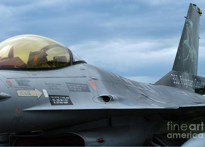 Air Component Greeting Card featuring the photograph The F-16 Aircraft Of The Belgian Army by Luc De Jaeger