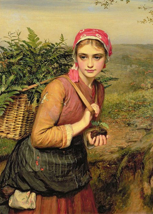 The Fern Gatherer Greeting Card featuring the painting The Fern Gatherer by Charles Sillem Lidderdale
