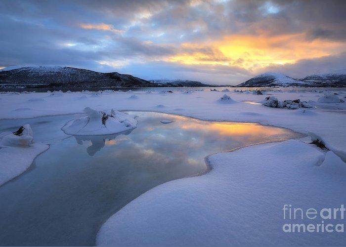Evenskjer Greeting Card featuring the photograph The Fjord Of Tjeldsundet In Troms by Arild Heitmann
