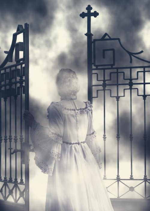 Woman Greeting Card featuring the photograph The Gate by Joana Kruse