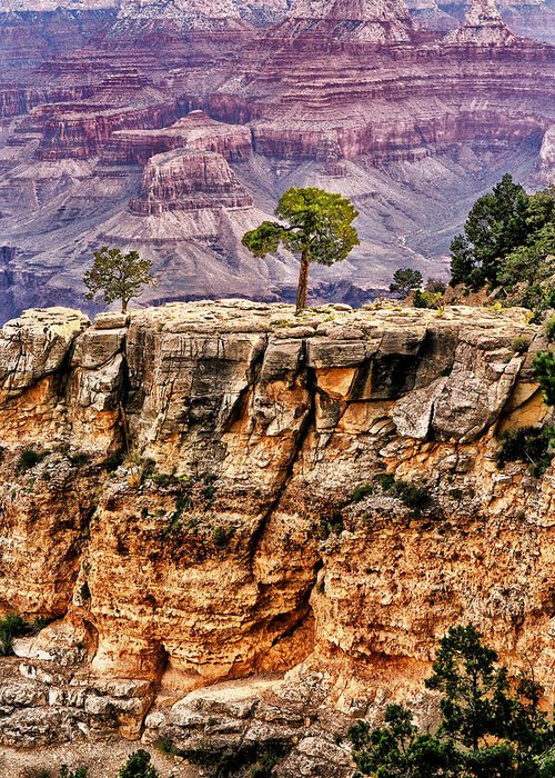 Arizona.the Grand Canyon Greeting Card featuring the photograph The Grand Canyon Iv by Tom Prendergast