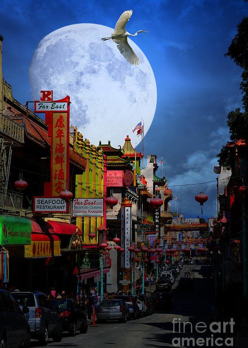 San Francisco Greeting Card featuring the photograph The Great White Phoenix Of Chinatown . 7d7172 by Wingsdomain Art and Photography