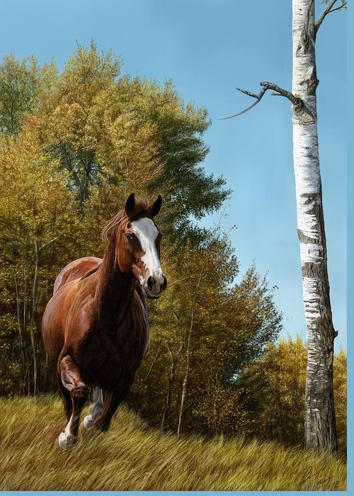 Chestnut Paint Horse Greeting Cards