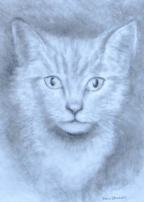 Pencil Drawing Greeting Card featuring the drawing The Kitten by Jack Skinner
