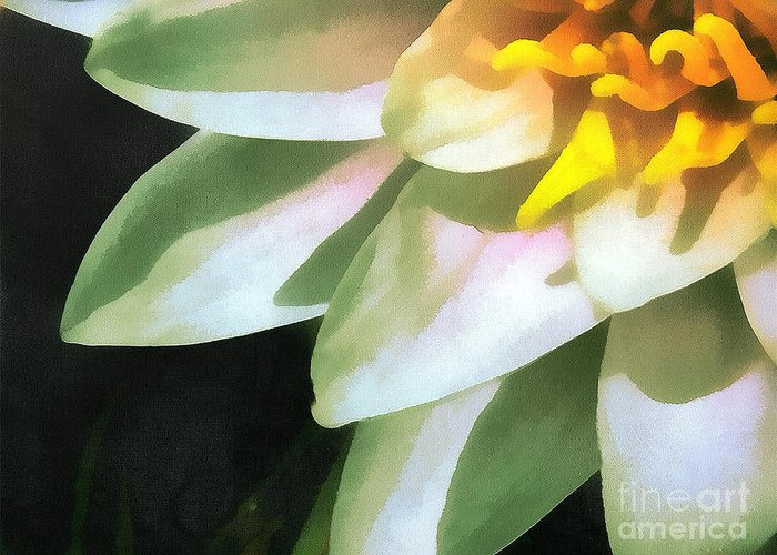 Odon Greeting Card featuring the painting The Lily Flower by Odon Czintos