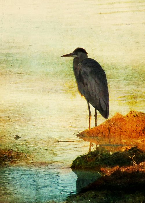 Blue Heron Greeting Card featuring the photograph The Lonely Hunter by Amy Tyler