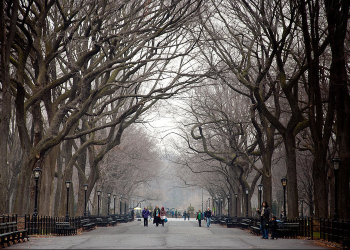 The Mall Greeting Card featuring the photograph The Mall Central Park by Heidi Reyher