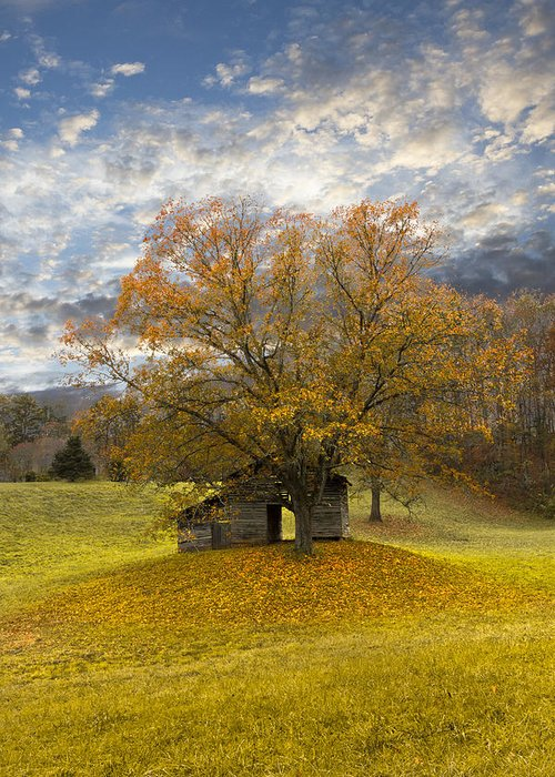 Appalachia Greeting Card featuring the photograph The Old Oak Tree by Debra and Dave Vanderlaan