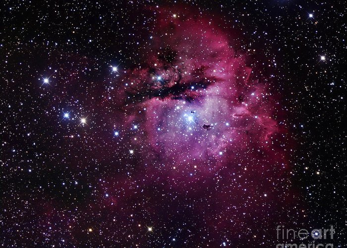 Astronomy Greeting Card featuring the photograph The Pacman Nebula by Robert Gendler