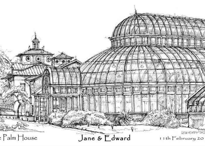 Palm Greeting Card featuring the drawing The Palm House For Jane And Edward by Building Art