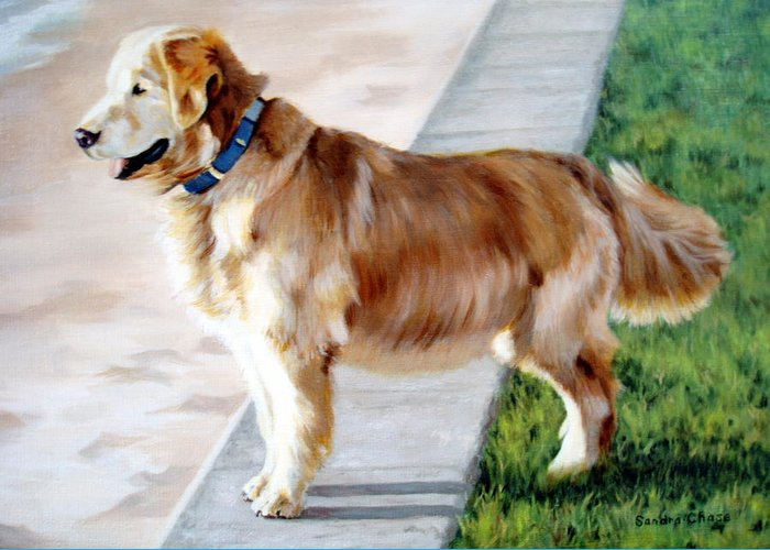 Dog Greeting Card featuring the painting The Patient Golden by Sandra Chase