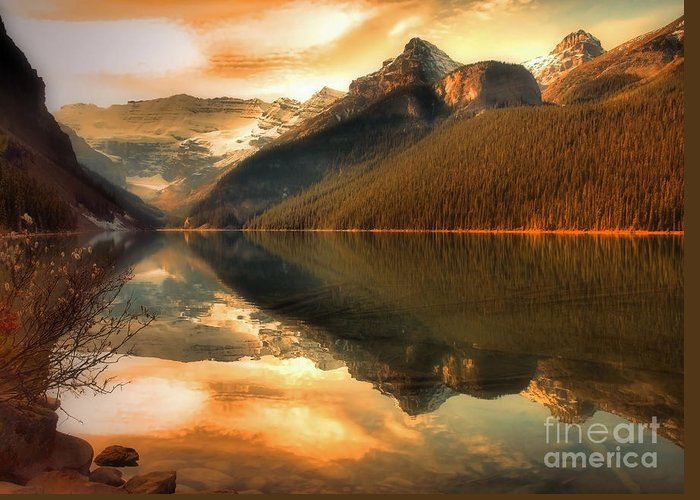 Nature Greeting Card featuring the photograph The Quiet Golden Glow by Tara Turner