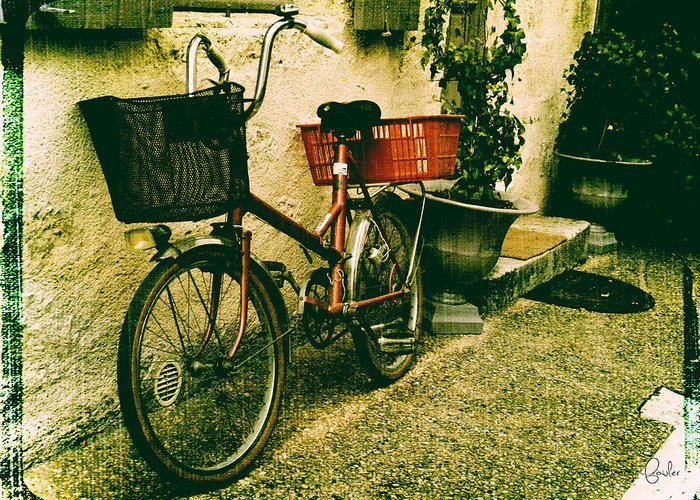 Vintage Bicycle Greeting Card featuring the photograph The Quiet Life by Georgia Fowler