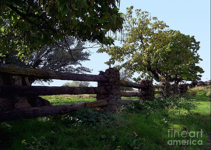 Fence Greeting Card featuring the photograph The Rail Fence by Charles Robinson