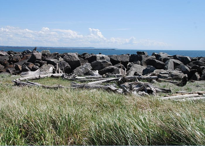 Ocean Greeting Card featuring the photograph The Rugged Coast by Michael Merry